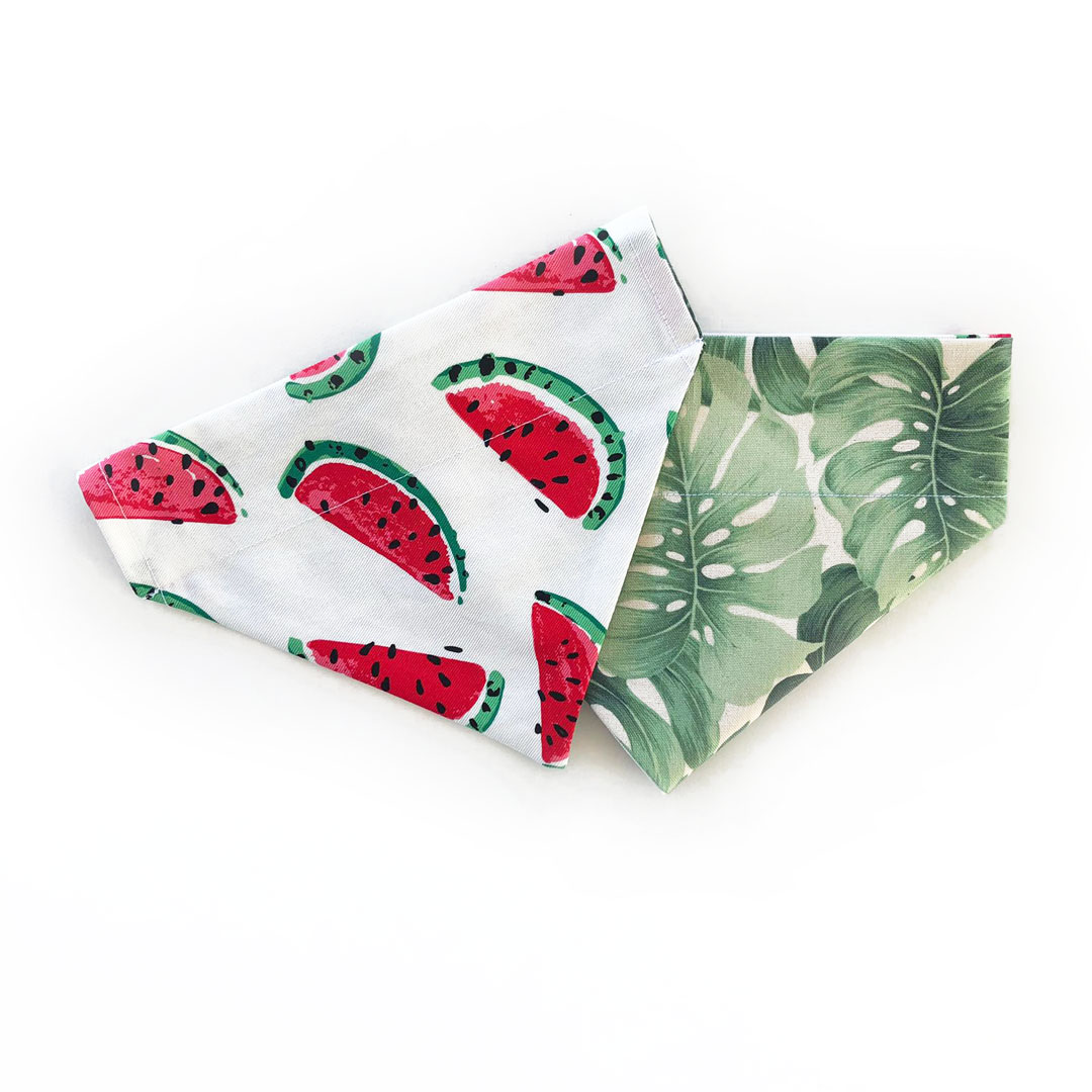 dog bandana with watermelon and tropical design