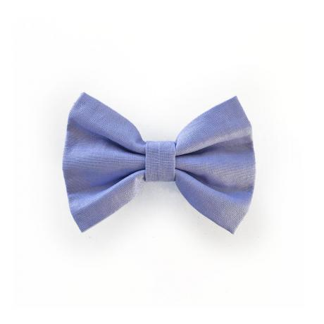 Purple bow tie for dogs