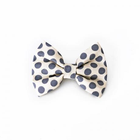 Grey polka dot dog bow tie