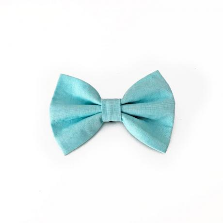 Iceberg blue dog bow tie