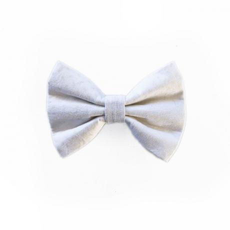 White dog bow tie
