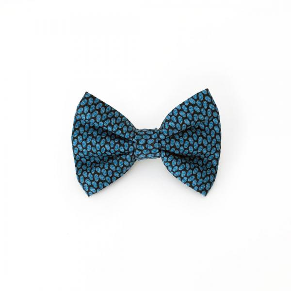 navy dog bow tie