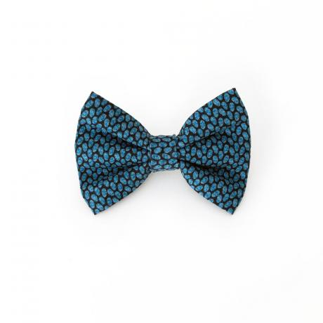 navy dog bow tie