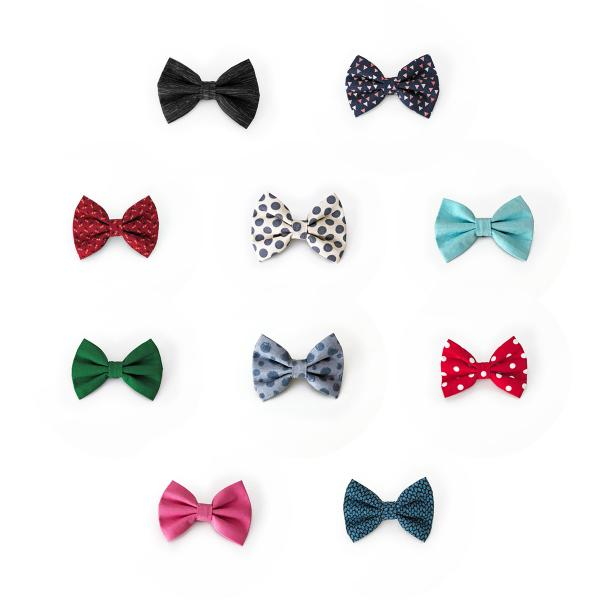 Frankie wears dog bow tie collection