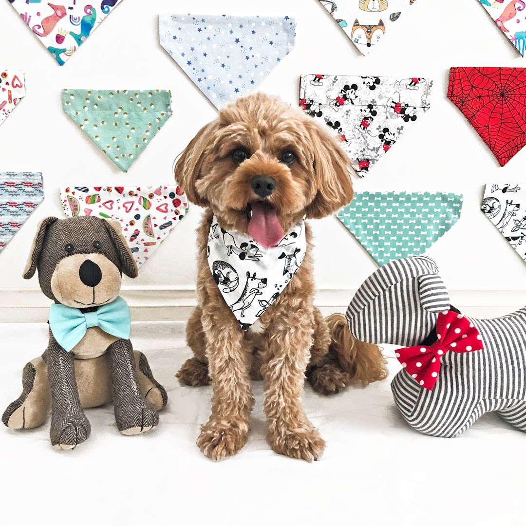 Frankie Wears Dog Accessories Stationery Paint Spots Dog Bandana